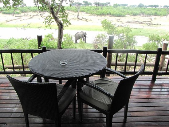 ‪‪Belmond Savute Elephant Lodge‬:                   Room with a view