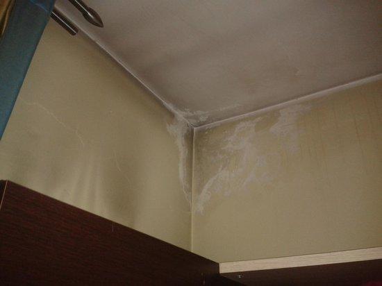 HL Hotel Campidoglio:                   Muffa sul soffitto