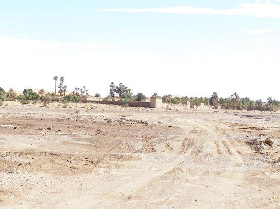 Auberge Camping Sahara:                   toegangsweg naar auberge Sahara