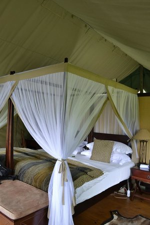 Botlierskop Private Game Reserve:                   Luxury Tent von innen