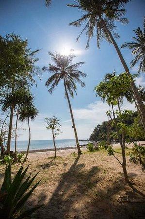 Anda Lanta Resort:                   Paradise!