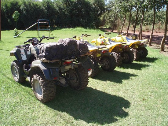 Nature Discovery:                   Our machinery...a Suzuki King Quad 400 4x4 and three Suzuki LTZ250's