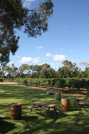 Knee Deep Winery Restaurant:                   A great picnic locationas well