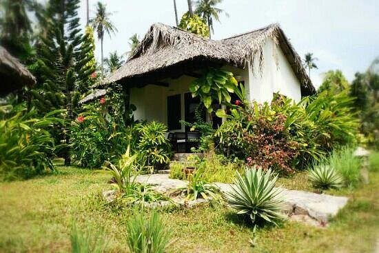 Mai House Resort:                   вид на коттедж                 