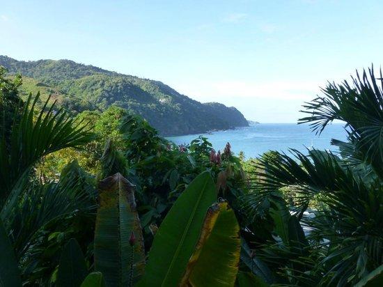 Carpe Diem Villa:                   Castara Bay