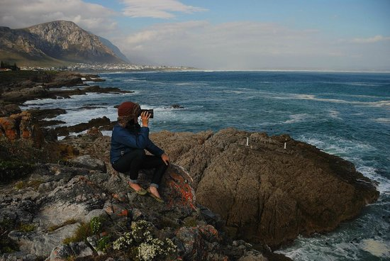 ‪موزايك برايفت سانكتشوري:                   Looking for whales in Hermanus
