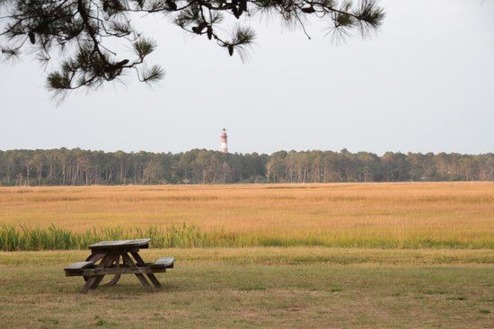Maddox Family Campground:                                     View of lighthouse from campsite