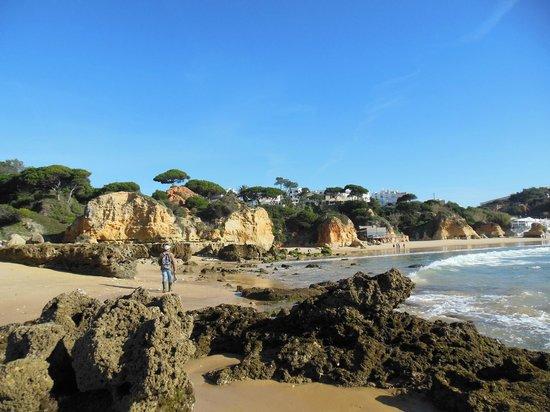 Apartamentos do Parque :                   Beach in front of apts at low tide
