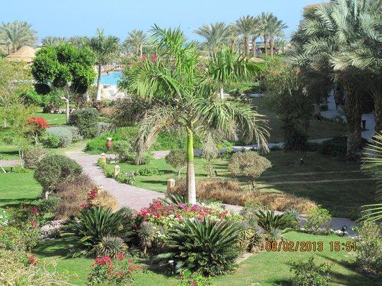 Amwaj Blue Beach Resort & Spa:                                     вид с балкона