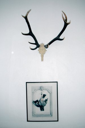 Chalet du Mont d'Arbois :                   More antlers and hunting art
