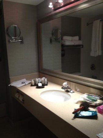 Atlantica Hotel Halifax:                   counter space and make up mirror