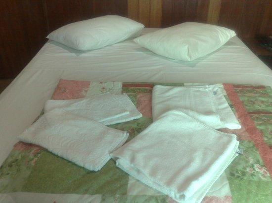 Hotel Pousada Silene:                                     arreglos diarios en la habitacion