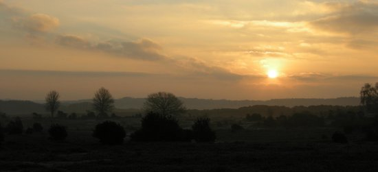 Hurst End Bed & Breakfast:                   Dawn at Bolton's Bench from top car park Lyndhurst