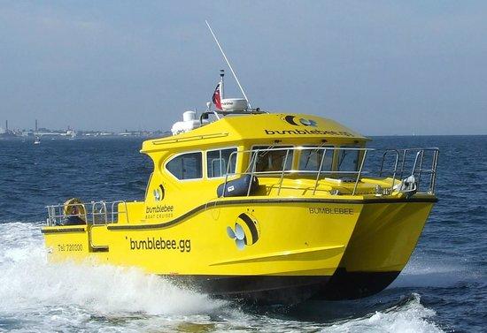 Bumblebee Boat Cruises: Buzzing along