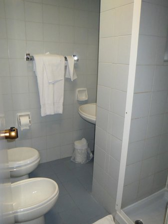 Albergo Carlo Magno Hotel:                   The bathroom. Mine was the smallest of all the 50 tour people I went with. Not