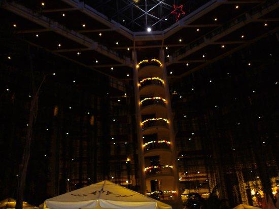 Paradisus Cancun:                   Luces de Navidad del Lobby Noche