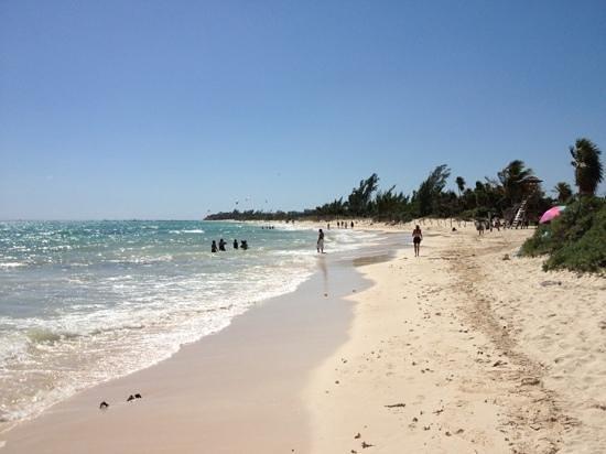Paradisus Playa del Carmen La Perla:                   la playa