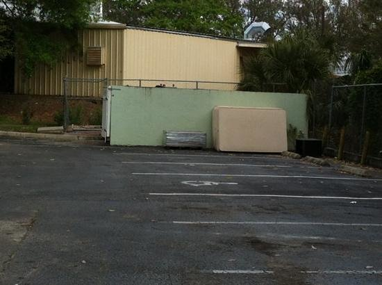 Days Inn North Orlando:                                     mattress by the dumpsters and raccoons