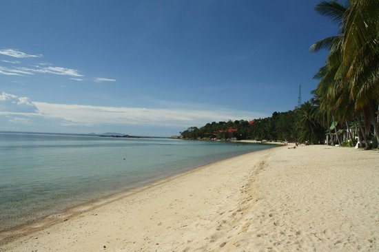 Haad Chao Phao Beach:                   a beautiful beach