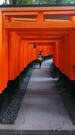 Hotel Monterey Kobe:                   Fushimi Inari