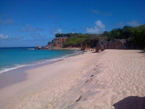 Club Orient Resort:                   Ile de Tintamarre face à la baie orientale