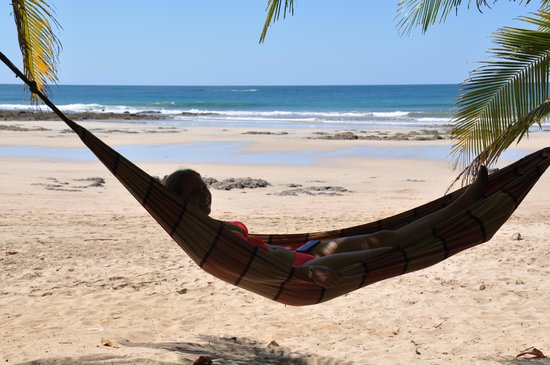 Seafari Costa Rica:                   lunch and hammock at Lola's is a must!