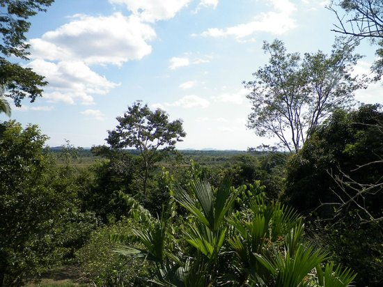 Cayequest Private Tours :                   View from farm hilltop