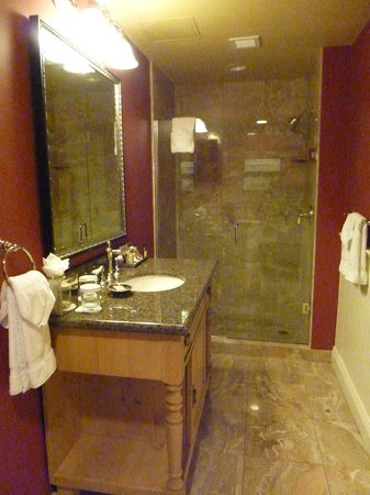 Wentworth by the Sea, A Marriott Hotel & Spa:                   Bathroom, Wentworth by the Sea ~ New Castle, NH