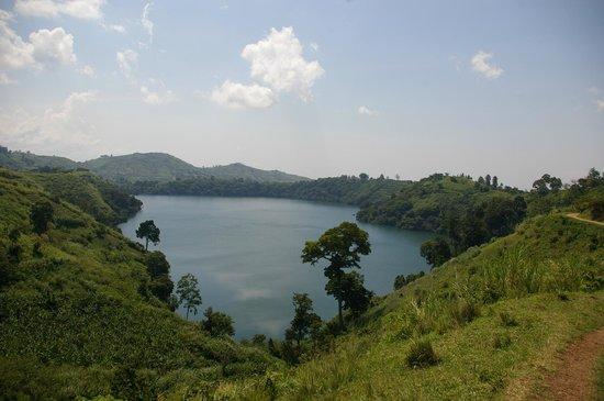 CVK Lakeside Budget Accommodation & Monkey Sanctuary :                   carter lake