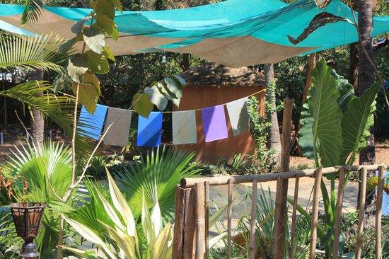 Secret Garden Resort:                   Yoga