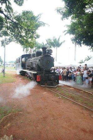 Passeio de Maria Fumaca Campinas - Jaguariuna:                                     motivo do nome maria fumaça - e sai fumaça