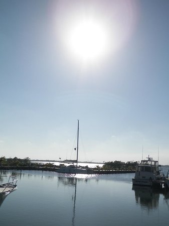 Mathieu's Delicatessen:                   Sun setting over the harbour