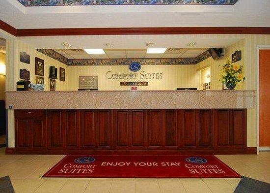 Comfort Suites St.Joseph / Stevensville: lobby