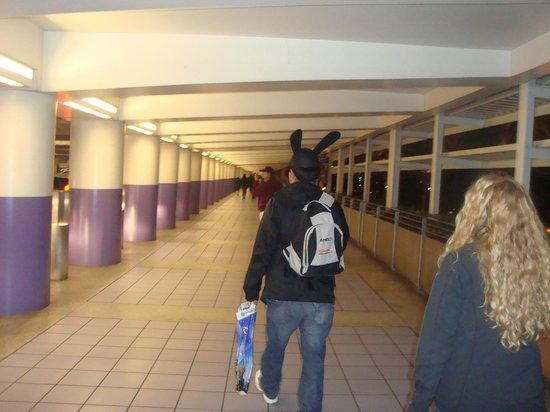 Super 8 Anaheim/Disneyland Drive:                   estacionamiento de disneylandia a 3 cuadras del hotel