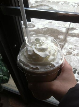 Seven Elephants Coffee :                                     squiggle