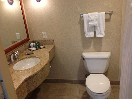 Hilton Austin Airport:                   Small but clean bathroom