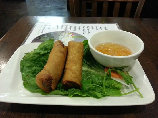 Bowl of Pho:                   Fried spring roll