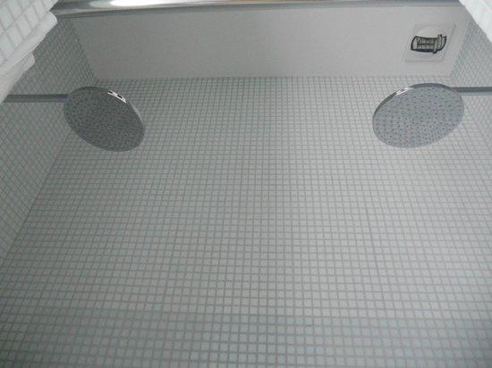 Hotel du Haut Marais:                   double shower                 