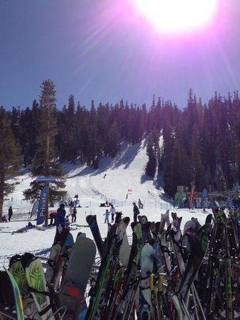 Mammoth Mountain Inn:                                     beautiful skiing