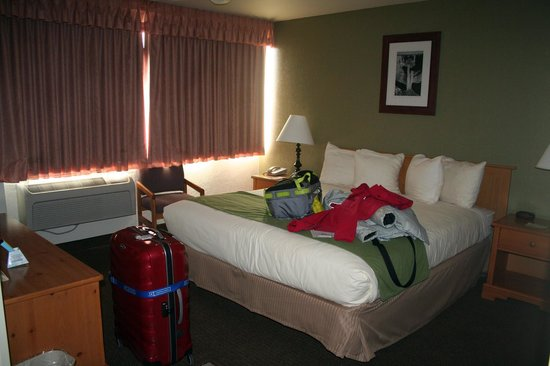 Best Western Pony Soldier Inn & Suites:                   Room 110 bedroom
