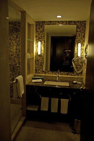 Radisson Blu Agra Taj East Gate:                   Bathroom