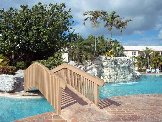 Island Seas Resort :                   Pool
