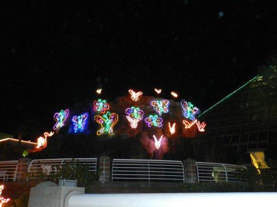 Festival of Lights Moody Gardens Galveston Texas