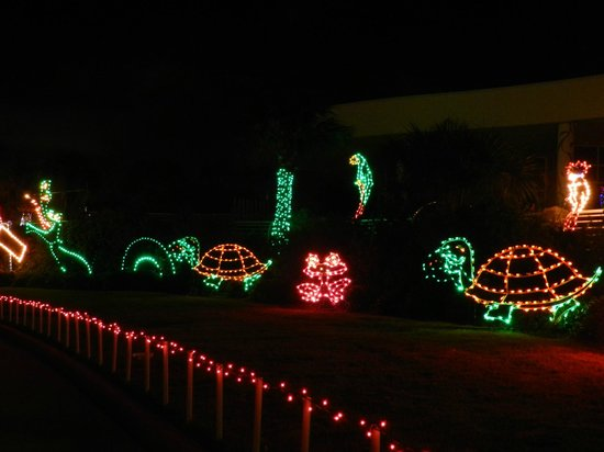 Animated Display Festival Of Lights Moody Gardens Galveston Texas Foto Di Moody Gardens