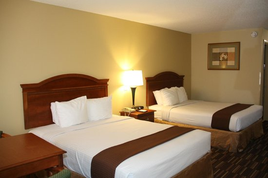 Best Western Greenville Inn:                   Room