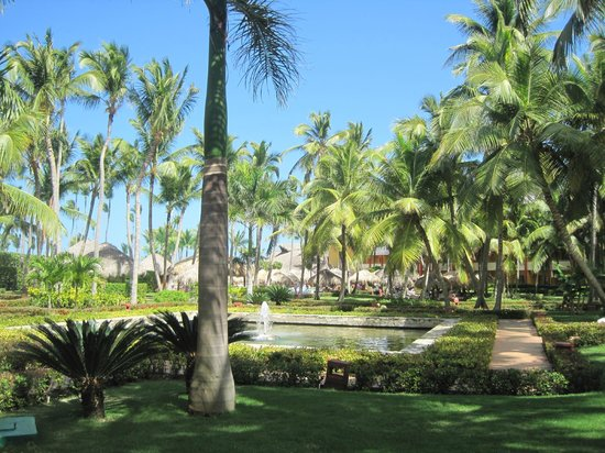 Iberostar Punta Cana:                   Walking around on the grounds
