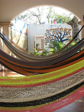 Hostel Ka'beh:                   Hammock city