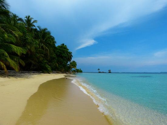 Under sea Panama: isla zapatillas