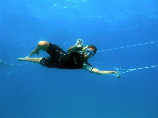 Under sea Panama