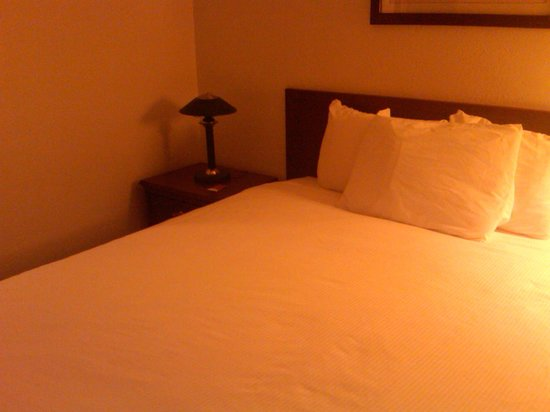 Stonebridge Hotel Fort McMurray:                   Bed and end table